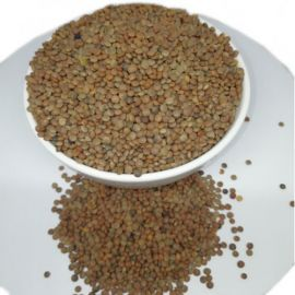 Organic Whole Masoor Dal